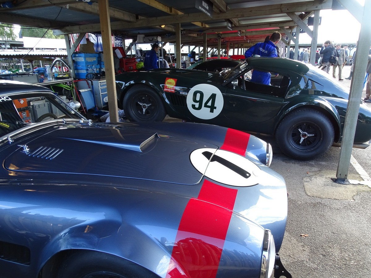 Cobras at the Goodwood Revival 2017
